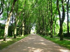 Low Cost Porto Experience: A Sunday Stroll in Serralves
