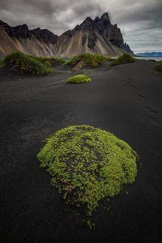 Black sand beaches, Iceland.