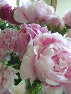 Mom's family picked peonies to decorate graves on Memorial Day