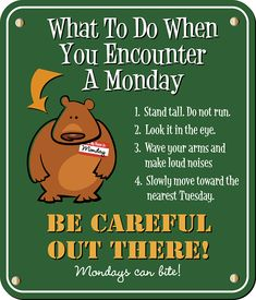 What to do when you encounter a Monday? funny monday humor happy monday monday morning monday greeting monday quote