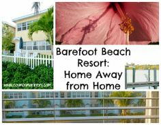 Barefoot Beach Florida Map.7 Best Fly Away With The Family Images On Pinterest Indian Shores