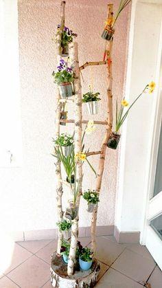 Hauswurz in nussmuehle garten deko pinterest for Bastelideen gartendekoration
