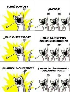 Cuanta verdad!! :))