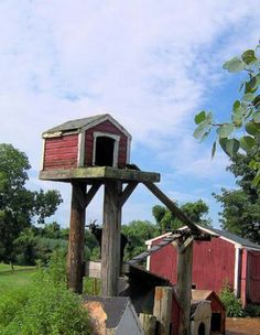 Seems A Little Scary But They Love It An Elevated Goat Pen