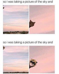 So I was taking a picture of the sky and.....