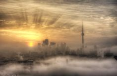 Foggy Toronto Sunrise, Canada (by Richard Gottardo). Tour Cn, Beautiful World, Beautiful Places, Beautiful Scenery, Cool Pictures, Cool Photos, Amazing Photos, Funny Photos, Toronto Photos