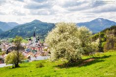 Mariazell-Frühling