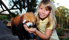Go to Australia Zoo and have an animal encounter with a 'Rascally Red Panda' #airnzsunshine