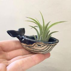 Handmade Hand-sculpted Mini Blue Whale Ceramic Bowl Sculpture The post Handmade, Hand-sculpted Shiny White Porcelain Whale Ceramic Bowl Sculpture Air Planter Decorative Jewelry Holder appeared first on Trendy. Ceramic Bowls, Ceramic Pottery, Slab Pottery, Thrown Pottery, Pottery Vase, Ceramic Mugs, Ceramic Pinch Pots, Hand Built Pottery, Ceramic Decor