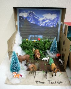 This is a fourth-grade biome project, representing the taiga biome. Taiga, also known as coniferous or boreal forest, is the largest terrestrial biome on earth. Long, cold winters and short, mild, wet summers are typical of this region. Fifth Grade Science Projects, Class Projects, School Projects, Projects For Kids, Ecosystems 4th Grade, Ecosystems Projects, Forest Ecosystem, Deciduous Forest Biome, Crates
