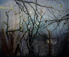 Elizabeth Magill (Born Title Shaman Date 2006 Medium Oil on canvas Provenance Anthony Wilkinson Contemporary Artists, Modern Art, Art Thou, Photo Tree, Landscape Paintings, Landscapes, Aesthetic Pictures, Flower Art, Painting & Drawing