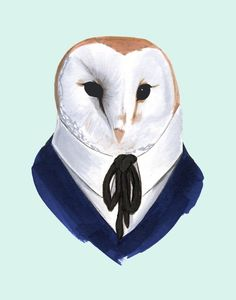 Barn Owl print 11x14 - another one by Ryan Berkley. I may need to own this.