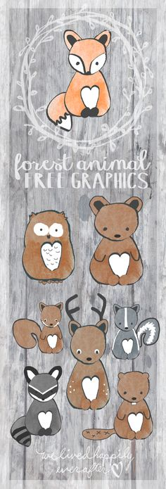 Free Forest Animal Free Graphics - owl, squirrel, deer, raccoon from ♥ Forest Animals, Woodland Animals, Forest Animal Crafts, Woodland Creatures Nursery, Woodland Baby, Woodland Theme, Woodland Forest, Woodland Nursery, Baby Mobile