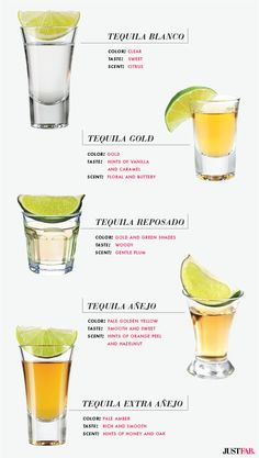 Learn about these 5 Delicious Tequilas, perfect for any celebration | JustFab Blog
