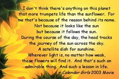 Sunflower Sayings And Quotes by @quotesgram