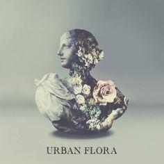 Alina Baraz & Galimatias - Urban Flora EP  Their sound is epic and the lyrics are amazing!