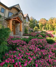 Enhance your home with SunPatiens®