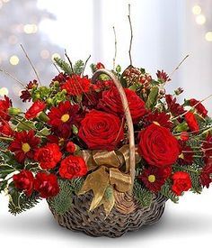 Festive Basket - traditional red and gold festive basket with red roses. Passion For Flowers Basket Flower Arrangements, Christmas Flower Arrangements, Floral Arrangements, Flower Baskets, Church Flowers, Christmas Flowers, Beautiful Rose Flowers, Flower Spray, Japanese Flowers