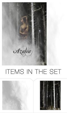 """Azalea"" by sabrinav625 ❤ liked on Polyvore featuring art"