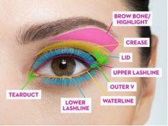 How to Put Eyeshadow Perfectly : A step by step tutorial | E-fashionforyou