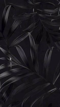 Screen Savers Black Wallpaper Backgrounds 50 Ideas For 2019