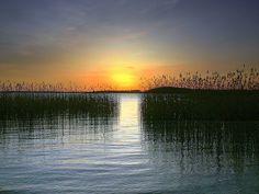... finland colours turku eu archipelago smörgåsbord ruissalo naturesfinest ...    dipity.com