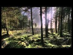 Erik Satie   Sarabande No. 1, No. 2, No. 3, Jean Yves Thibaudet エリック・サティ 3つのサラバンド - YouTube