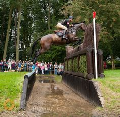 Andrew Nicholson and Calico Joe - cross country phase, Land Rover Burghley Horse Trials, 1st September 2012. by Nico...., via Flickr