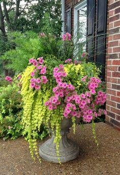 Pretty Front Door Flower Pots Ideas21 Outdoor Window Shutters, Front Porch Flowers, Front Door Planters, Planters For Sale, Brown Brick, Dark Brown, Flower Pot Design, Porch Wall, Shade Garden
