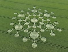 crop circles ~ the designs are beautiful if not the meticulous creations