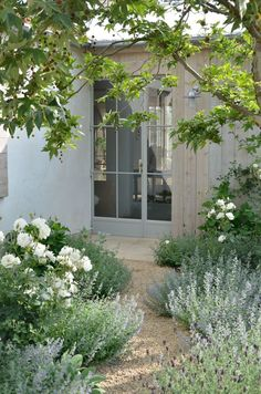 Velvet and Linen: Patina Farm garden  Floribunda roses, several different kinds of lavender and cat mint