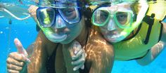 Snorkeling Tour in Puerto Morelos, 20 minutes from Cancun Best Snorkeling, Snorkel Mask, Puerto Morelos, Cancun, Day Trip, Egypt, Tours, Animals, Document Sharing