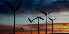 A unique biomimetic design could take wind power in a whole new direction, both for small-scale and large-scale renewable energy systems.