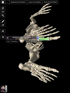 Essential Skeleton – An Excellent iPad App for Students