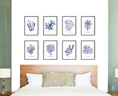 Nautical Art, Coral Art Print, Set of 8 Sea Life Decor, Blue Seaweed Art, Sea Coastal Wall Print, Bathroom Art, Beach House Wall Art, Ocean Art This set of 8 blue seaweed art print will make an elegant collection for your living room. They were painted by me, Tinarosa Tam. This listing
