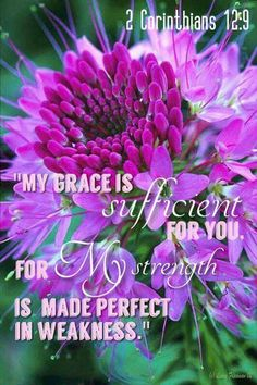 """2 Corinthians 12 : 9a. (KJV). """"And he said unto me, My grace is sufficient for thee: for my strength is made perfect in weakness."""