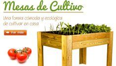 A cultivar! Vuestra tienda es genial, tenéis unos productos muy sorprendentes.