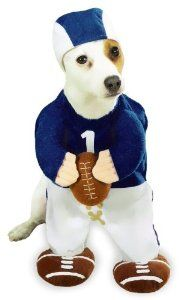 Halloween Costume Medium Dog Football Fever by PetEdge   --- Buy securely online at BuyDogSweaters.com