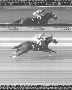 Official finish line photo-  Secretariat won the 1973 Belmont Stakes by 31 lengths to capture the Triple Crown