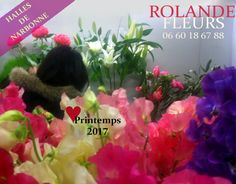 Rolande fleuriste aux halles de Narbonne vous propose sa gamme de fleurs et de bouquets printemps 2017
