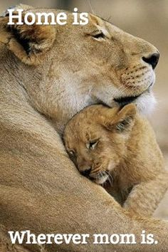 Home is .... Wherever mom is.