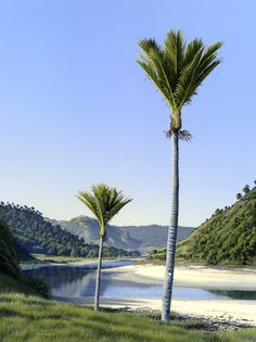 Nikau Point, Anatori River Abel Tasman National Park, Stormy Night, Natural World, Wind Turbine, National Parks, River, Landscape, Gallery, Beach