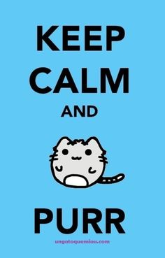 keep calm and purr