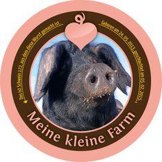 Schwein 172