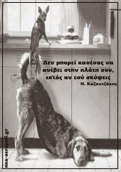 """""""Δεν μπορεί να ανεβεί κανείς στην πλάτη σου  εκτός αν σκύψεις"""" Νικος Καζαντζακης ---------- Σοφα Λογια - ΝΕΑ ΑΚΡΟΠΟΛΗ"""