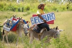 """""""El Biblioburro.  This is an initiative by a teacher named Luis Soriano Borges, who travels through the most distant and hidden villages of Colombia to bring books to children. The male donkey is named Beto and the female is Alfa."""" Colombia! <3"""