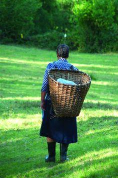 Mujer con cuévano, Selaya  #Cantabria #Spain