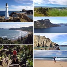Love the #NorthIsland's east coast. Saw all this and more on a 4 day roadtrip #NewZealand #itsTime2Go!