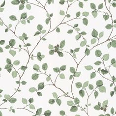 Aesthetic Patterns Discover Hassel by Sandberg - Green / White - Wallpaper : Wallpaper Direct Hassel Green / White wallpaper by Sandberg Wallpaper Direct, Green Wallpaper, Room Wallpaper, Flower Wallpaper, Pattern Wallpaper, Wallpaper Backgrounds, Iphone Wallpaper, Sandberg Wallpaper, Vintage Wallpaper Patterns
