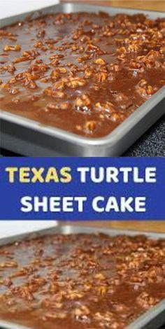 TEXAS TURTLE SHEET CAKE Most of us already know and love Texas Sheet Cake (thank you to our Southern friends! But when you add pecans, more chocolate, and a caramel drizzle magical things happen! Just Desserts, Delicious Desserts, Dessert Recipes, Yummy Food, Quick Dessert, Fudge Recipes, Food Cakes, Cupcake Cakes, Cupcakes